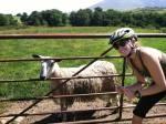 Keswick goat